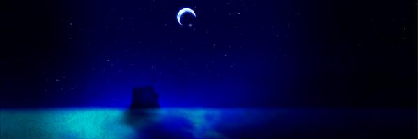 夜の鳴る洞