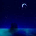 CNo.1446 夜の鳴る洞